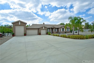 Perris Single Family Home For Sale: 17854 Big Sky Circle
