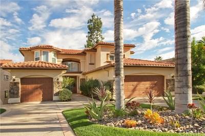 Canyon Lake Single Family Home For Sale: 23030 Gray Fox Drive
