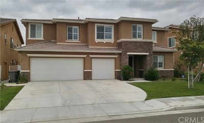 Menifee Single Family Home For Sale: 30386 Blue Cedar Drive