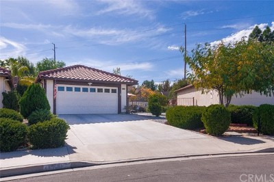 Menifee Single Family Home For Sale: 27161 Rangewood Street