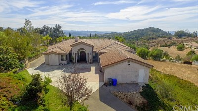 Fallbrook Single Family Home For Sale: 3283 Sage Road