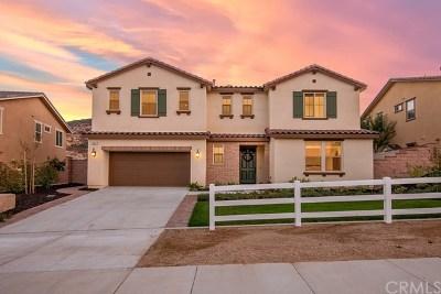 Corona Single Family Home For Sale: 26297 Santiago Canyon Road
