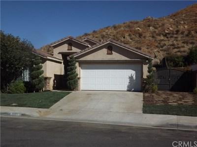 Perris Single Family Home For Sale: 3873 Raintree Circle