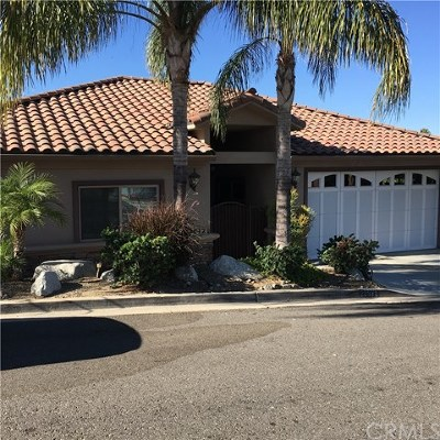 Canyon Lake Single Family Home For Sale: 22572 San Joaquin Drive W