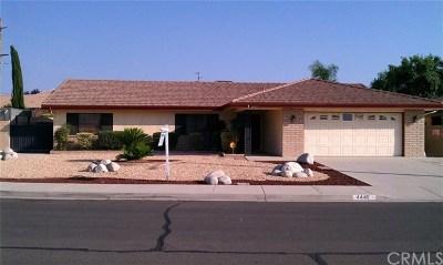 Hemet Single Family Home For Sale: 4445 Annisa Avenue