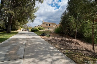 Temecula Single Family Home For Sale: 29821 Valle Olvera