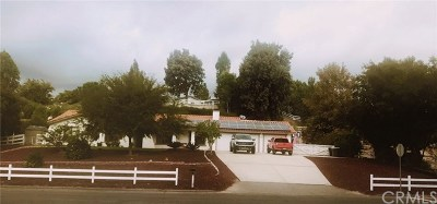 Temecula Single Family Home For Sale: 30330 Del Rey Road