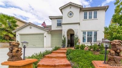 Wildomar Single Family Home For Sale: 35748 Verde Vista Way