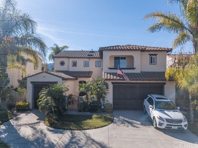 Temecula Single Family Home For Sale: 45847 Corte Carmello