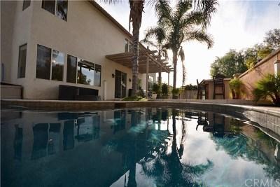 Temecula Single Family Home For Sale: 32202 Corte Carmona