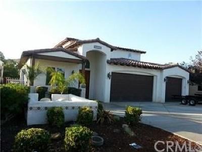 Canyon Lake Single Family Home For Sale: 29821 Fisherman Court