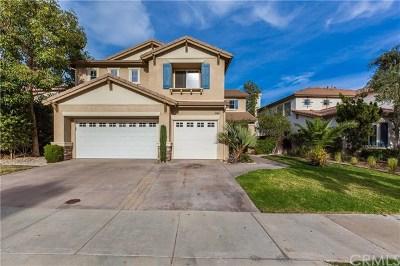 Lake Elsinore Single Family Home For Sale: 31952 Cedarhill Lane
