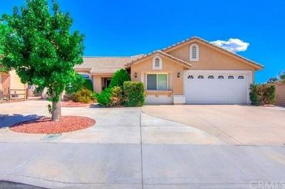 Lake Elsinore Single Family Home For Sale: 30010 N Lake Drive