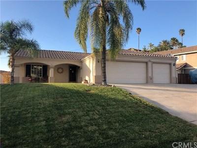 Canyon Lake Single Family Home For Sale: 29555 Longhorn Drive