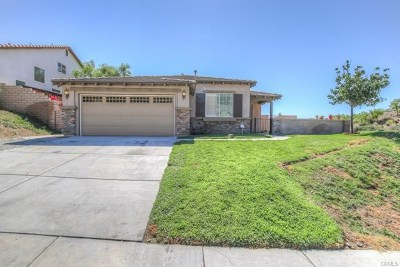 Lake Elsinore Single Family Home For Sale: 29454 Falling Leaf Drive