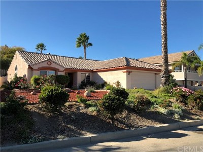 Canyon Lake Single Family Home For Sale: 29675 Big Range Road