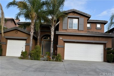 Lake Elsinore Single Family Home For Sale: 11 Ponte Brava
