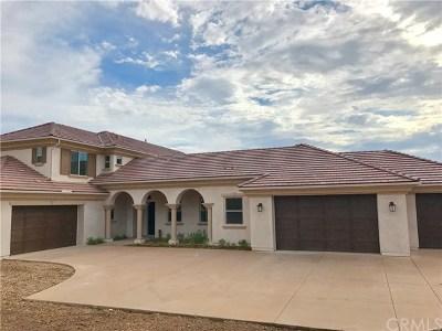 Temecula Single Family Home For Sale: 42103 Arbor Glen Drive
