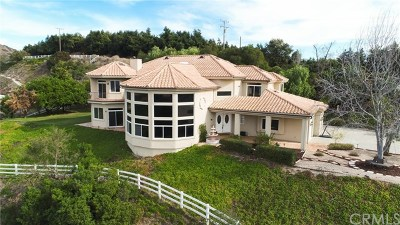 Temecula Single Family Home For Sale: 46250 Via Vaquero