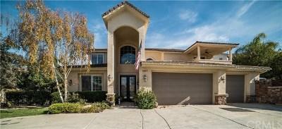 Canyon Lake Single Family Home For Sale: 28871 Yosemite Place