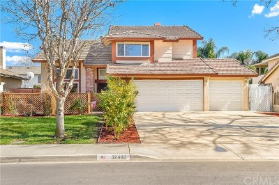 Lake Elsinore Single Family Home For Sale: 32460 Somerset Drive