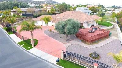 Hemet Single Family Home For Sale: 27295 Legend Lane