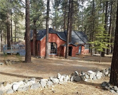 Wrightwood Single Family Home For Sale: 1132 Edna Street
