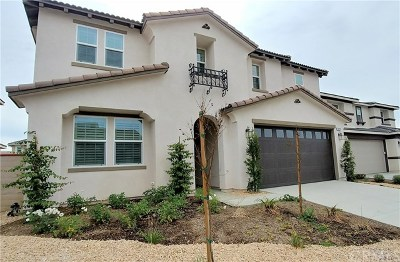 Temecula Single Family Home For Sale: 31245 Brush Creek Circle