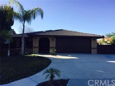Canyon Lake Single Family Home For Sale: 23101 Canyon Lake Drive