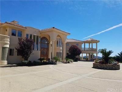Temecula Single Family Home For Sale: 25102 Terreno Drive