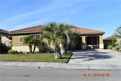 Menifee Single Family Home For Sale: 29341 Wildcat Canyon Rd Road