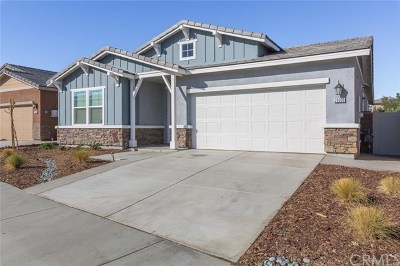 Lake Elsinore Single Family Home For Sale: 29309 Bent Grass