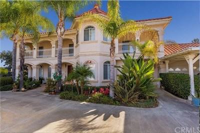 Temecula Single Family Home For Sale: 34083 Vino Way