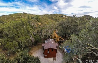 Lake Elsinore Single Family Home For Sale: 32485 Ortega