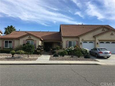 Menifee Single Family Home For Sale: 32868 Tiznow