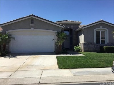 Hemet Single Family Home For Sale: 447 Lyle Drive