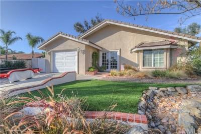 Canyon Lake Single Family Home For Sale: 30333 Cinnamon Teal Drive