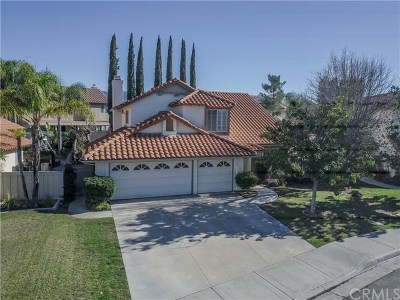 Temecula Single Family Home For Sale: 31707 Via Saltio