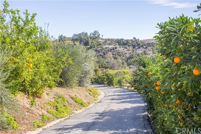 Temecula Single Family Home For Sale: 44259 De Luz Road