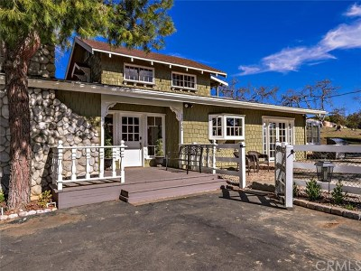 Fallbrook Single Family Home For Sale: 1045 Big Oak Ranch Road