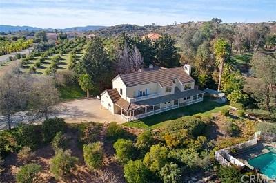 Temecula Single Family Home For Sale: 45591 Sandia Creek Drive
