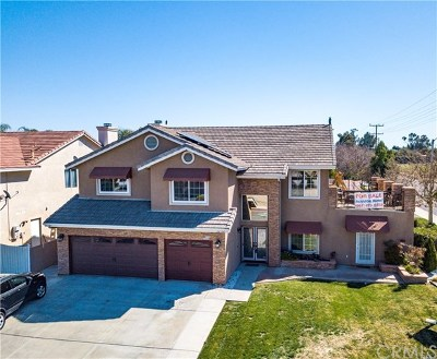 Wildomar Single Family Home For Sale: 32994 Willow Bay Road