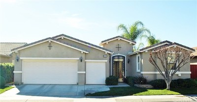 Hemet Single Family Home For Sale: 8297 Parry Drive