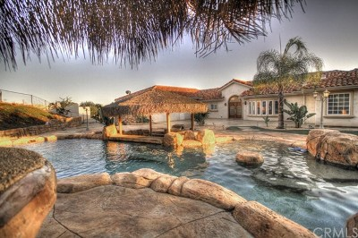 Temecula Single Family Home For Sale: 24910 Camino Del Valle