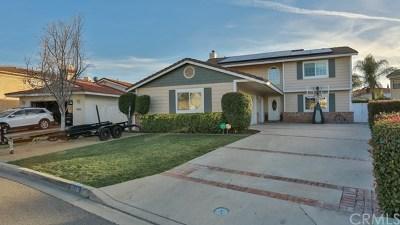 Canyon Lake Single Family Home For Sale: 22281 Tumbleweed Drive