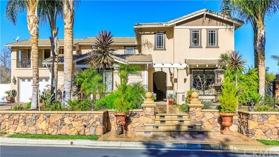 Murrieta Single Family Home For Sale: 42868 Joshua Tree Court