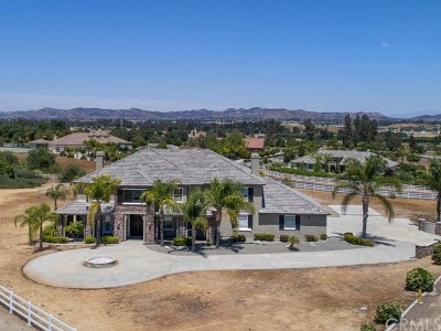 Murrieta Single Family Home For Sale: 42275 War Admiral Lane