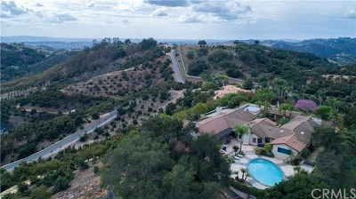 Temecula Single Family Home For Sale: 24656 Fuerte Road