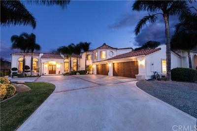 Murrieta Single Family Home For Sale: 42840 Hawthorn Street