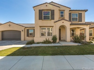 Lake Elsinore Single Family Home For Sale: 29288 Grand Slam